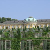 Виноградные терассы у дворца  Сан-Суси