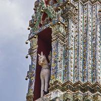 На всех башнях висят колокольчики, звенящие от малейшего дуновения ветерка