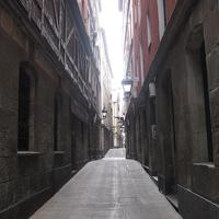 Улица Этчебаррия Камарой