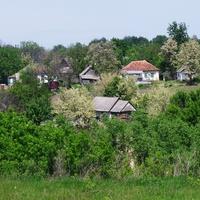 Лузанівка, весна, цвітуть дерева!