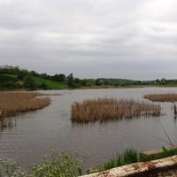 Пастирське,рибні місця.