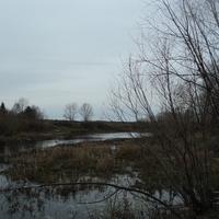 река оша во Вставском