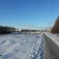 Тропа Ясенево - ОБИ