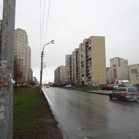 Улица Камышовая.