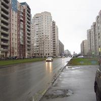 На Камышовой.