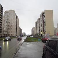 Камышовая улица.