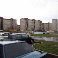 Жилые дома на Гаккелевской.