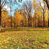 Городской парк осенью