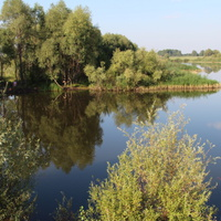 Пруд-озеро