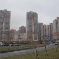 Вид на микрорайон на Шуваловском проспекте.