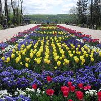 Парк весною 2013г .