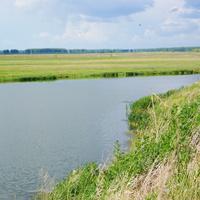 "озеро ""Хомут"" июль 2010г."