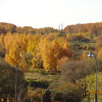 Вид на Тропаревский парк с Тропаревской ул.