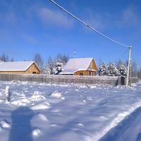 дер.Тельцово, окраина,декабрь 2013