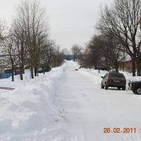 деревня Гриднево