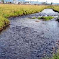 Село Николаевское, река Тунгура