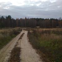 Дорога ведущая в деревню.
