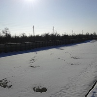 тека терек зимой