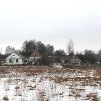 Дома деревни Шустики.