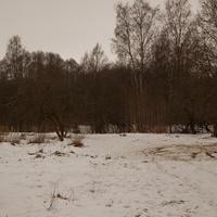 Парк Александрова Дача