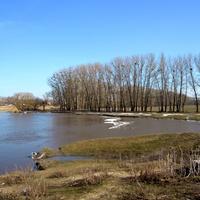 Природа у села Ржевка