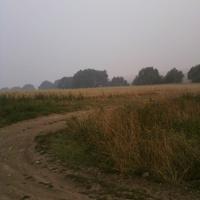 за околицей села Брутово