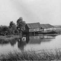 Водяная мельница на Урге, 60-е годы
