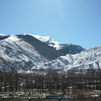 Знаменитая хлютская Тополиная роща на фоне зимних гор