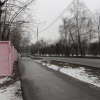 Бехтерева улица