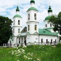 Воскресенская церковь в Молодях.