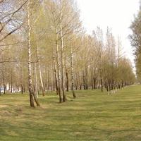 Микрогородок-парк