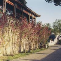 Пекин, парк Бэйхай
