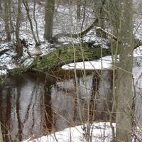 река Рябиновка  в Горной Шальдихе