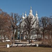 Парк в Смольном