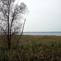 Вид с поселка на озеро