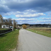 центральная дорога