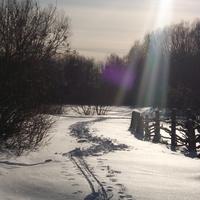 зимняя природа Розенталя