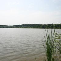 Лебединское озеро
