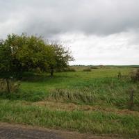 Сычики - яблоневый сад
