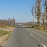 Дорога в сторону д. Ведрич