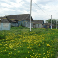 деревня Татарское Макулово