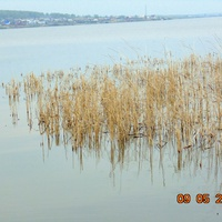 Беловское море