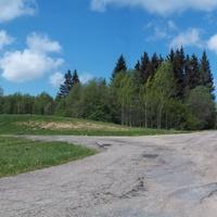 Дорога в Гаевцы