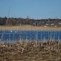 озеро Коргово