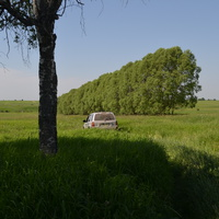 деревня Ляхово