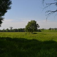 04.06.2014 деревеня Ляхово