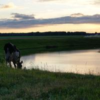 """закат над озером """"Хомут"""""""