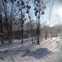 Зима на Вітовій греблі