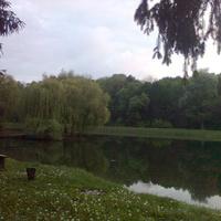 Островок в парке отдыха