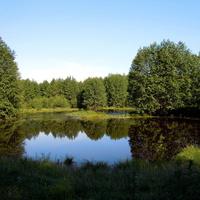 Торфяное озеро